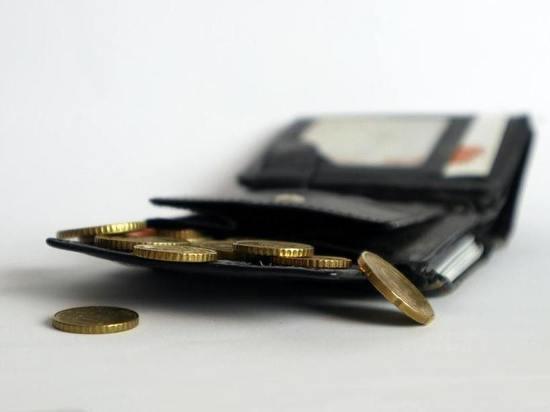 Житель Йошкар-Олы нашел кошелек и стал фигурантом уголовного дела
