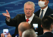 Жириновский объяснил, зачем ходил с Дегтяревым в баню