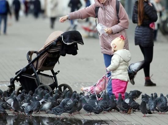 Мишустин: семьям с детьми выделят 18,5 млрд рублей