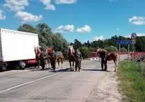 Калужские казаки встали на охрану