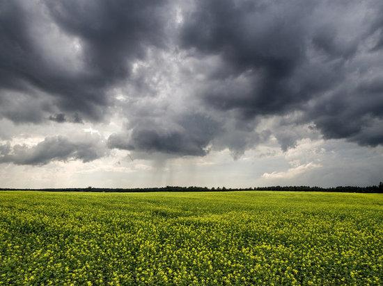 В выходные в Марий Эл ожидается облачность и небольшой дождь