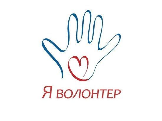Курская область в тройке лучших по волонтерским инициативам