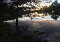 В Солотче снова разлилась река