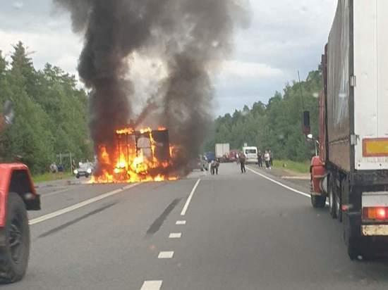 Полиция рассказала подробности ДТП со сгоревшей «Газелью»