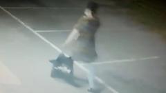 Возможная похитительница ребенка из роддома в Сальске попала на видео