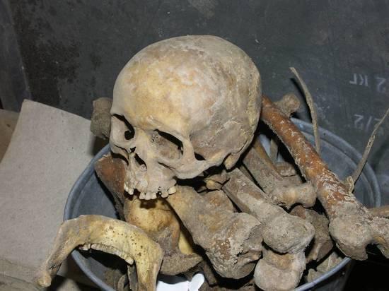 Дачнику в Ленобласти привезли землю с человеческими костями