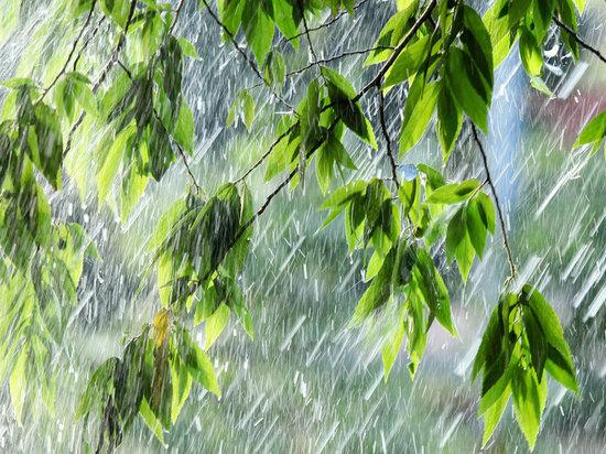 В Челябинской области до +23, местами сильные дожди, град