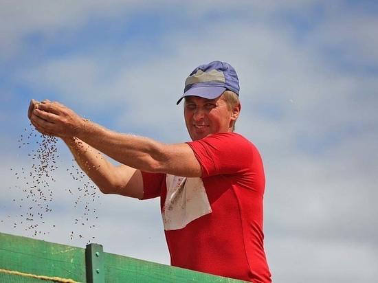Первый миллион тонн зерна собрали липецкие аграрии
