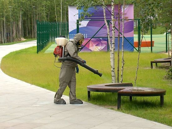 В Ноябрьске продезинфицировали городской парк