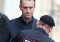 Оппозиционер Алексей Навальный опубликовал свою налоговую декларацию за 2019 год
