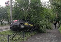 ГИБДД рассказала подробности аварии в Абакане с участием такси