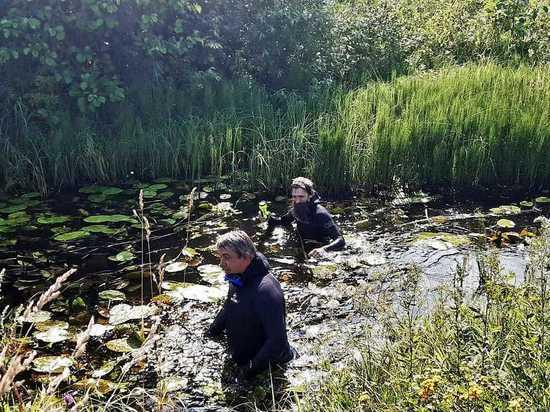 В Ивановской области пропавшего мужчину ищут водолазы и беспилотная авиация