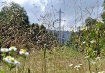Энергетики начали капитальный ремонт в предгорных районах Кубани