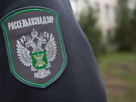 В Иванове оштрафовали компанию, торговавшую просроченными тушками цыплят