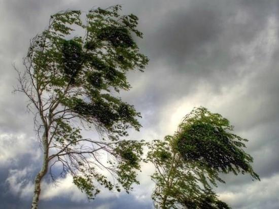 В Челябинской области испортится погода