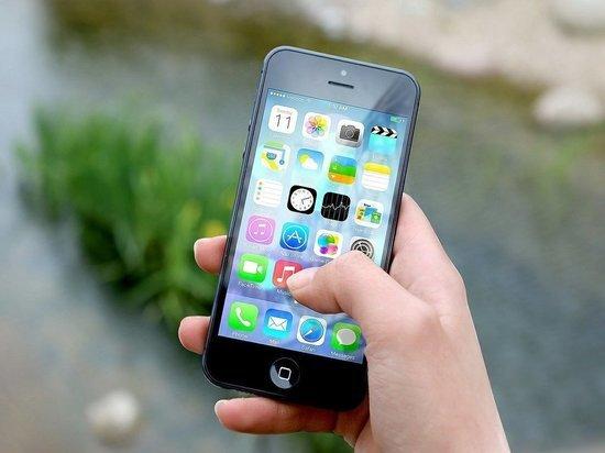 Житель Йошкар-Олы лишился 52 тысяч рублей, пытаясь купить Айфон