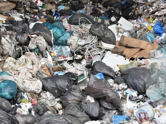 Германия, Гельзенкирхен: водитель мусоровоза обнаружил голову в отходах