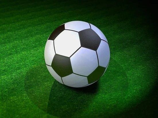 UEFA хочет запустить в Петербурге программу по массовому развитию футбола