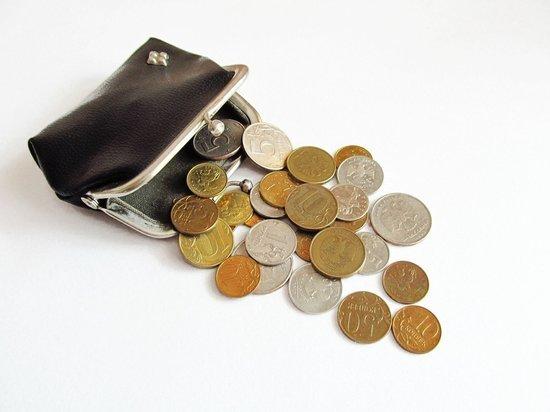 Граждане вынуждены расплачиваться «путинскими выплатами» по скопившимся долгам