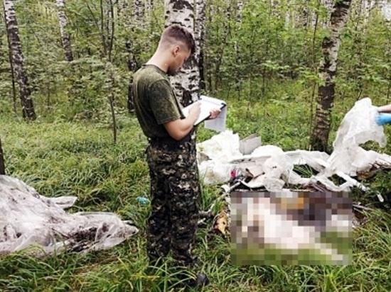 В Богородском районе задержан подозреваемый в убийстве попутчицы