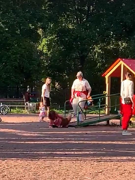 В Петербурге женщина избила 11-летнюю девочку на детской площадке