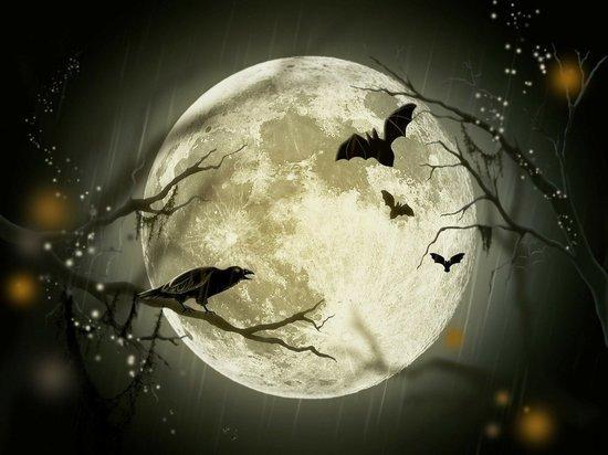 Луна в Стрельце. Работать в этот день лучше в обычном режиме