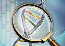 Убийц и насильников, сидящих в костромских колониях, поставили на ДНК-учет