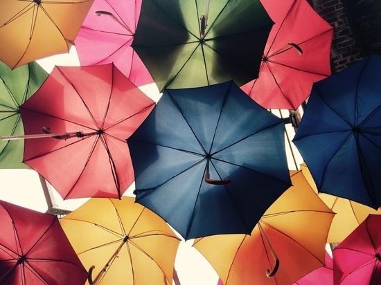 На выходных в Марий Эл установится дождливая погода