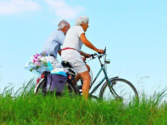 Власти Марий Эл утвердили программу «Активное долголетие»