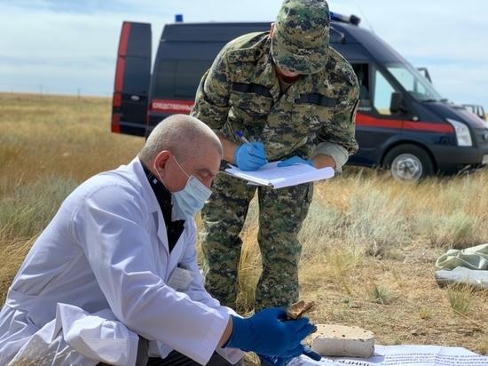 Под Волгоградом следователи извлекают останки жертв фашистов
