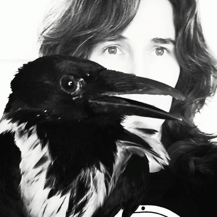 «Пусть у птиц вырастут новые крылья!»: тверитянка Анастасия Каменская спасает жизни