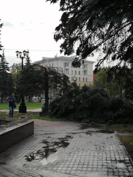В соцсетях появились фотографии последствий урагана в Челябинской области
