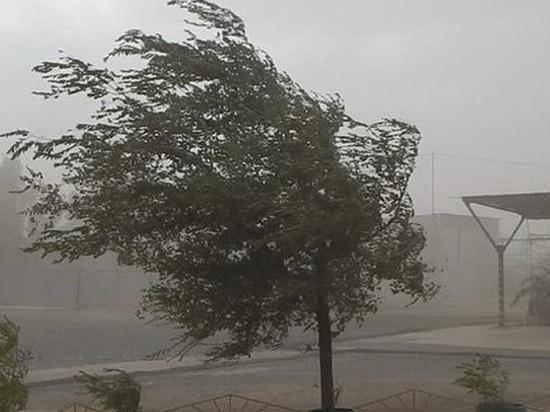 В Калмыкии ожидаются грозовые дожди с градом и сильным ветром