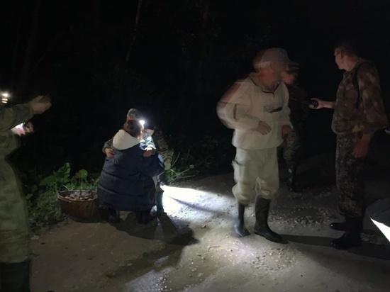 Сотрудники МЧС России помогли в поисках потерявшихся в лесу Петушинского района мужчины и ребенка