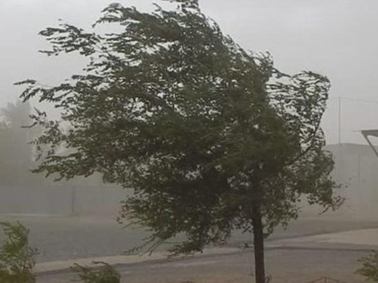 В Свердловской области ожидаются град, сильные дожди и грозы