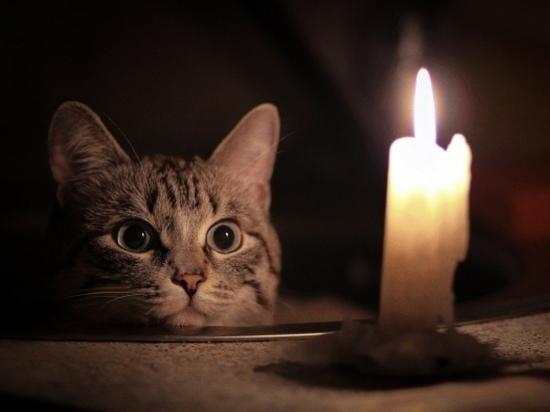 В Йошкар-Оле снова отключат свет
