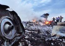 Ролью Украины в крушении MH-17 занялся Всемирный фонд безопасности полетов