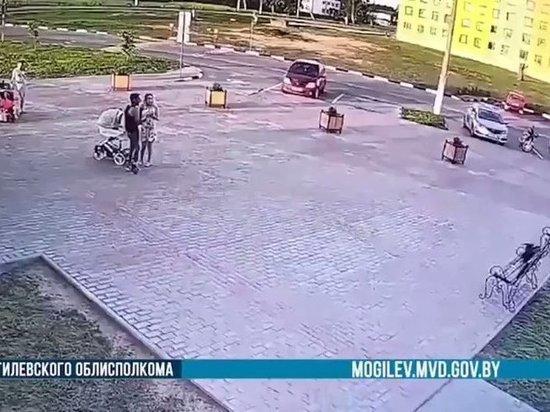 В Белоруссии ворона помогла вычислить грабителя