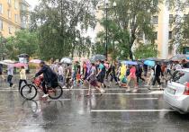 Хабаровская мэрия рассказала о причинах уменьшения числа митингующих