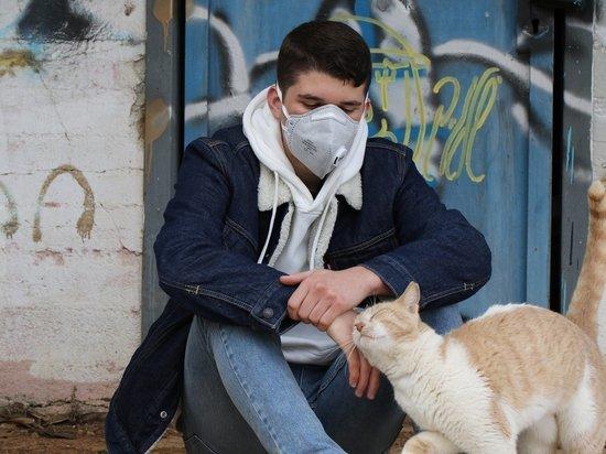 В Кировской области уже 5028 случаев коронавируса