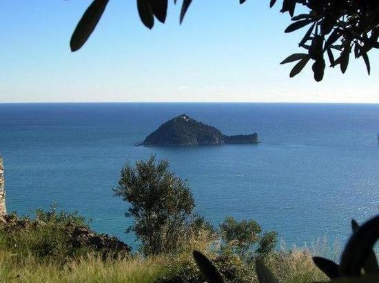 Сын украинского олигарха купил итальянский остров