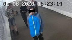 Вандалы вырвали две видеокамеры в отремонтированном подземном переходе в Петрозаводске