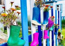Жители Ямала за лучшее озеленение дворов получат деньги, подарки и грамоты