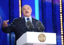 Президент Белоруссии Александр Лукашенко за 5 дней до выборов опубликовал свою предвыборную программу в газете «Звезда»