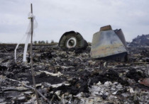 Эксперт: пилот MH17 переобувался за секунды до крушения