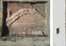 Остатки стены времен Бориса Годунова обнаружили археологи на территории Новодевичьего монастыря