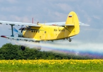 Госдума РФ предложила реформу «малой авиации». Что ждёт отрасль?