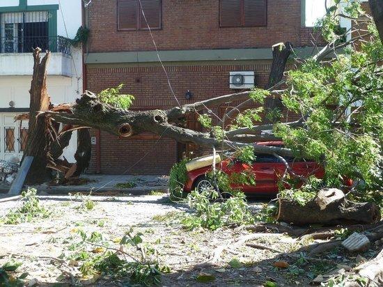 Жителей Башкирии предупреждают о штормовом ветре