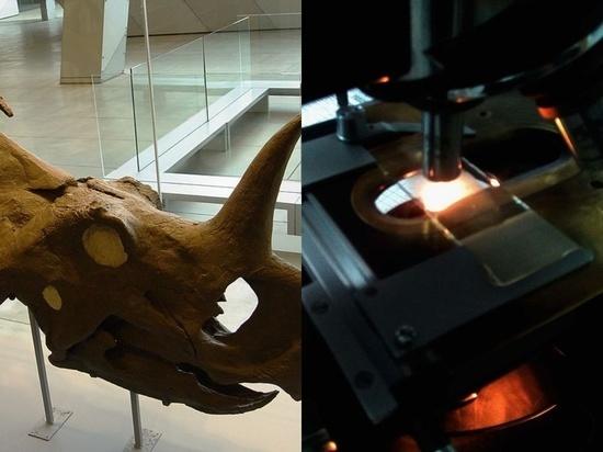 У динозавра впервые обнаружили раковую опухоль