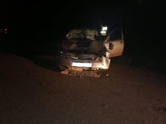 Семь человек пострадали при наезде автомашины в Марий Эл